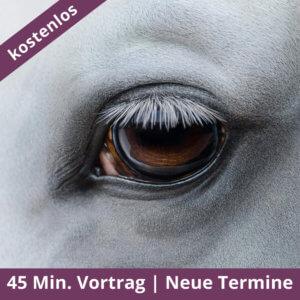 Augen auf beim Pferdekauf - Kostenloser Vortrag
